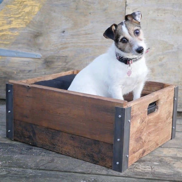 industrial style dog bed